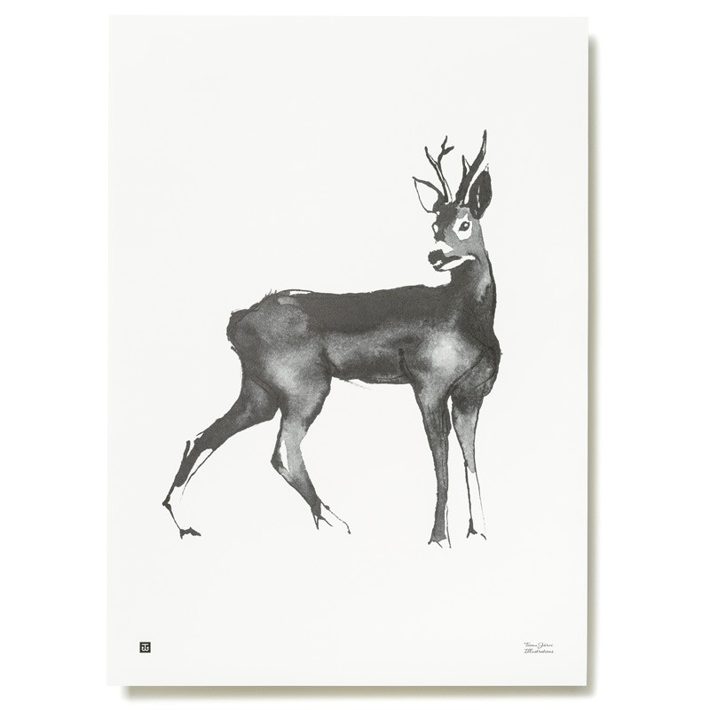Plakát Roe Deer 50x70