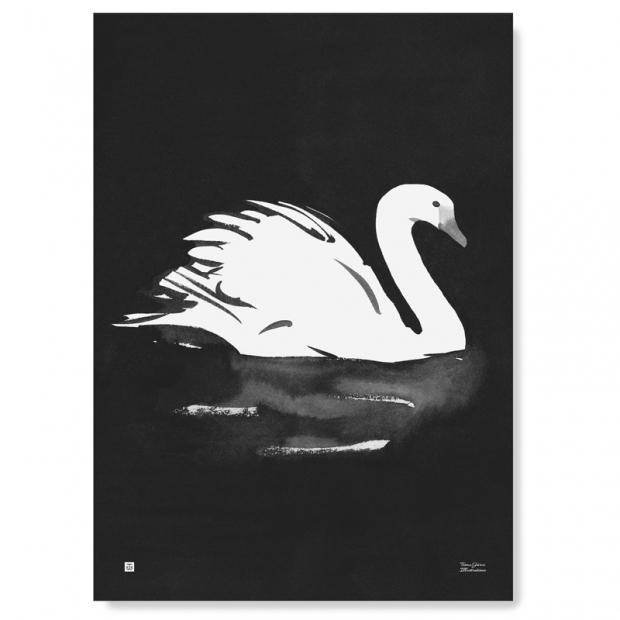 Plakát Swan 50x70