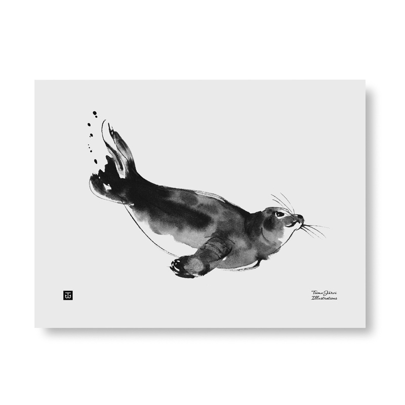 Plagát Ringed Seal 40x30