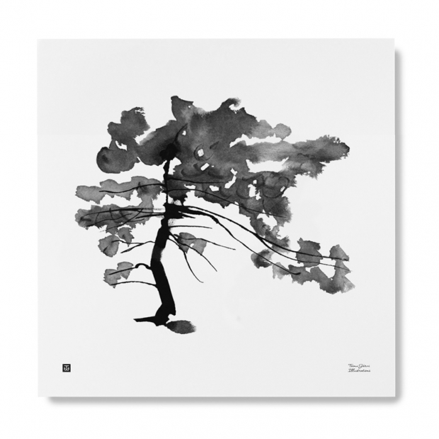 Plagát Pine Tree 50x50