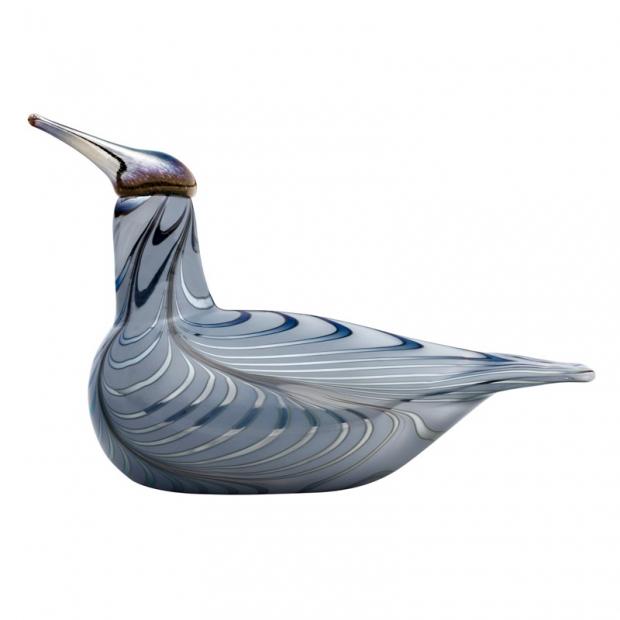 Ptáček Toikka Vuono 2019