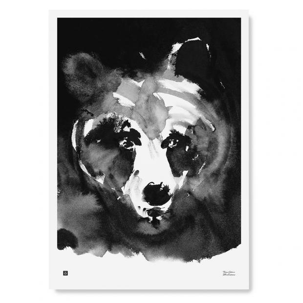 Plakát Mysterious Bear 50x70