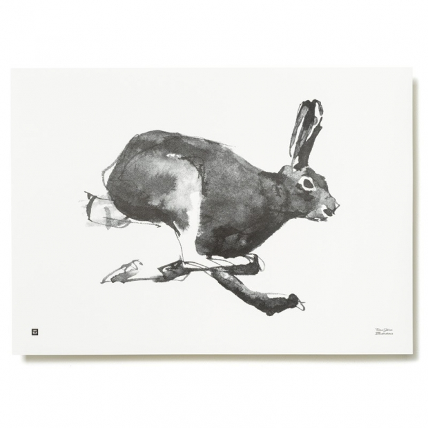 Plagát Mountain Hare 70x50