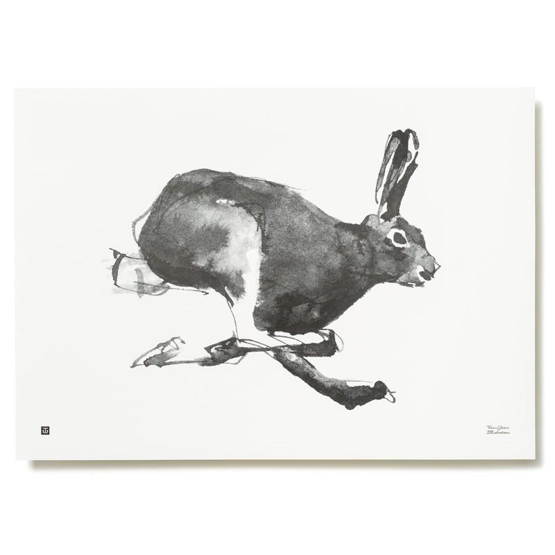 Plagát Mountain Hare 70x50