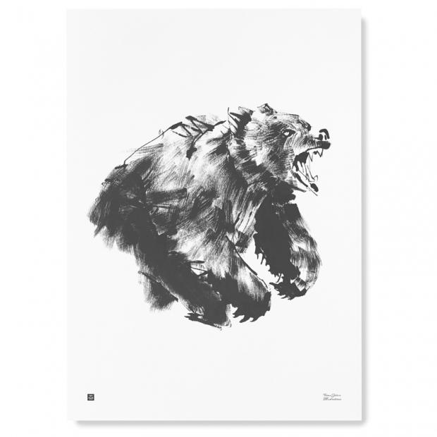 Plagát Brown Bear 50x70