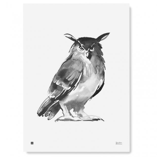 Plagát Eagle Owl 50x70