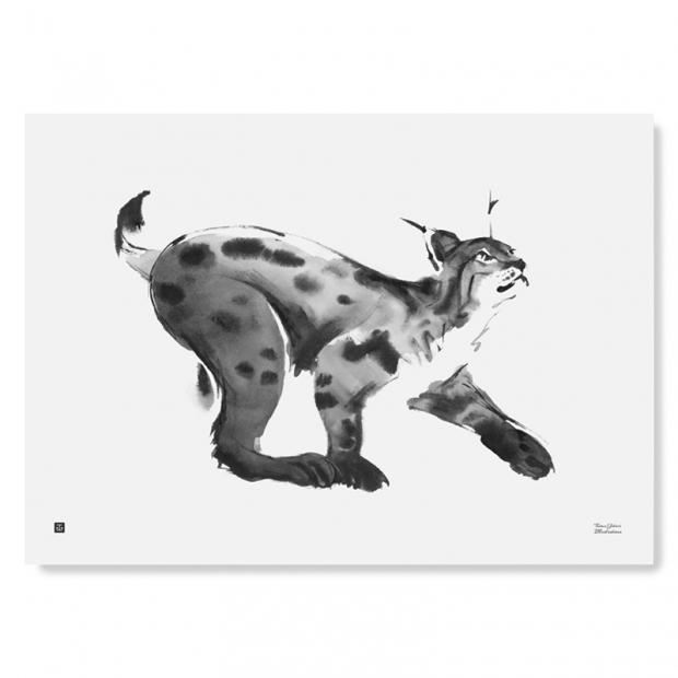 Plakát Lynx 70x50