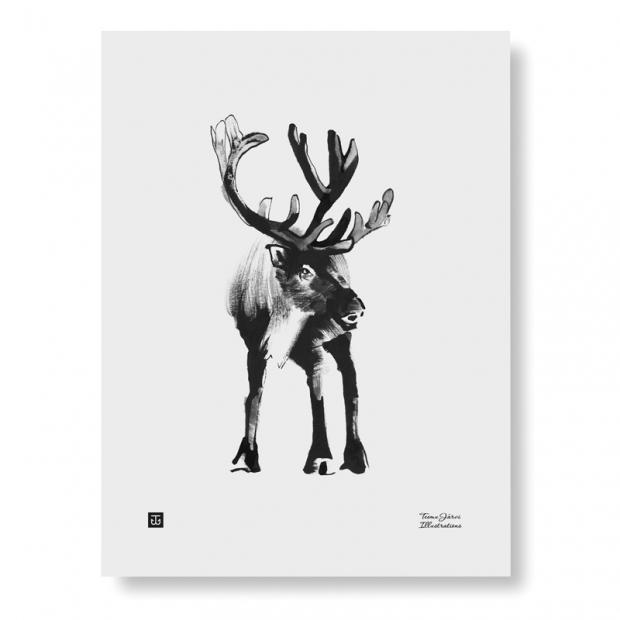 Plakát Reindeer 30x40